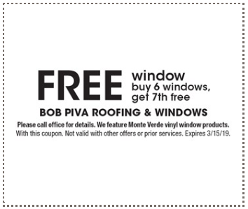 FREE Window Special